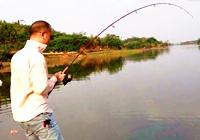 《路亚钓鱼视频》 水库亮片路亚25斤巨鲶