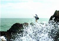 海钓战报——三亚海钓鲈鱼大丰收