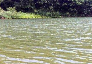 夹江北河口段
