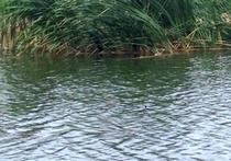 森格藏步狮泉河