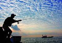 海钓防止鱼钩和钓组扎手的小技巧