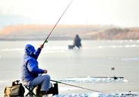 冬季钓鱼时气温和水温对鲫鱼习性的影响