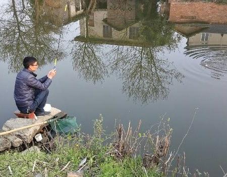 初春,雨过天晴,小塘板鲫连杆。大鲤鱼晚上自己动手铁板烧。 化氏饵料钓鲫鱼