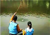 《垂钓对象鱼视频》 春季黑坑钓鲤鱼的技巧和经验