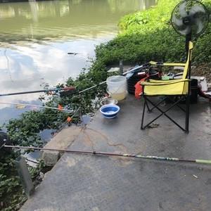 龙港钓鱼台