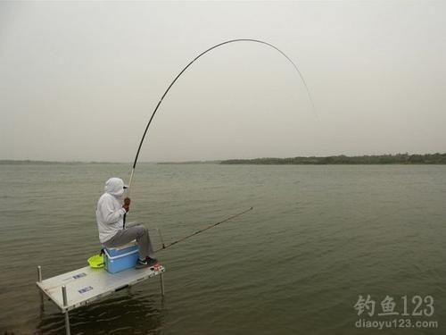 水库钓鱼选择鱼竿
