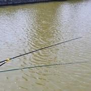 【技巧-春钓】6个必备技巧让你春季一直钓鱼一直爽