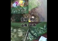《東北漁事》遼寧眾信爆香鯽各地釣魚爆護配方管用
