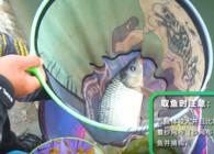 《釣魚公開課》第87期丨取魚摘鉤技巧