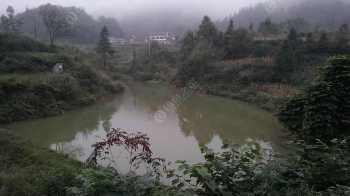 洪关河堰石笋钓场