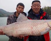 《游钓中国7》第六集 红水河寻青记 学习当地特色钓法