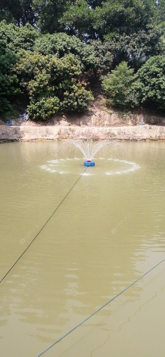 微笑钓鱼场