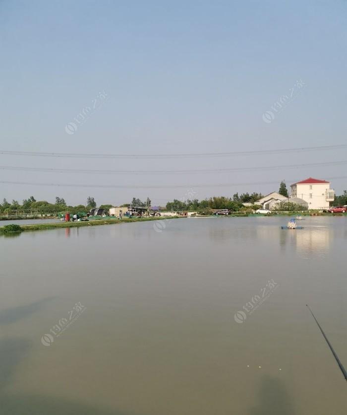 老沈原生态鱼塘