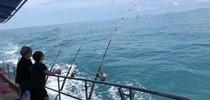 泰國蘇梅島夢想海釣行