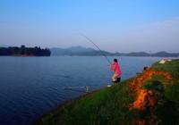 路亚钓鱼时,这些寻鱼观鱼的技巧你一定要牢记!