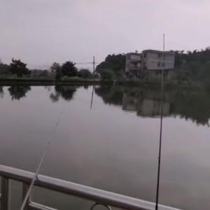 泸州鱼塘天气预报