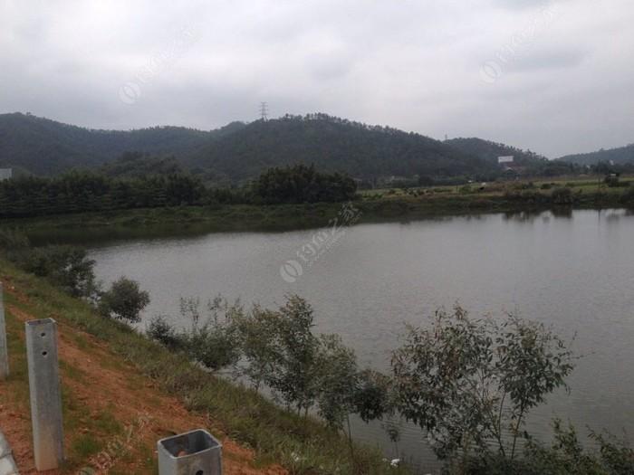 东成钓鱼场