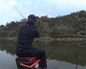 《麥子釣魚》并繼竿遛板鯽,狂拉黃金鯽,引來圍觀釣友紛紛叫好