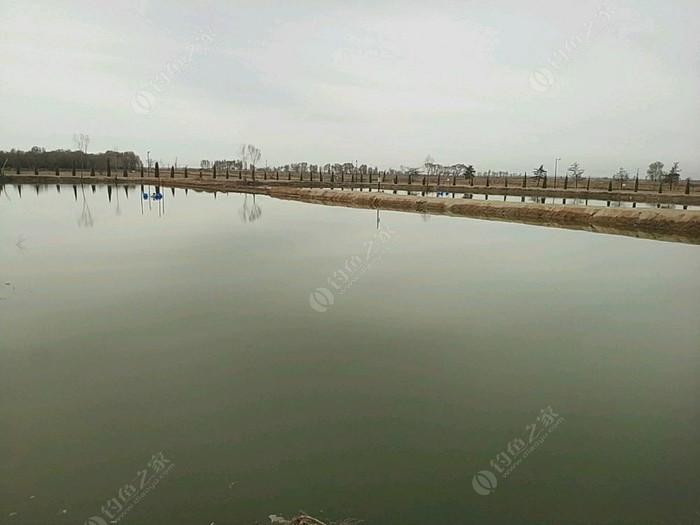 毛皂江伟大物塘