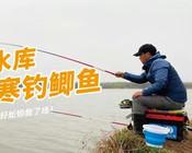 《白條游釣》托山水庫,倒春寒釣鯽魚,還好蚯蚓救了場!