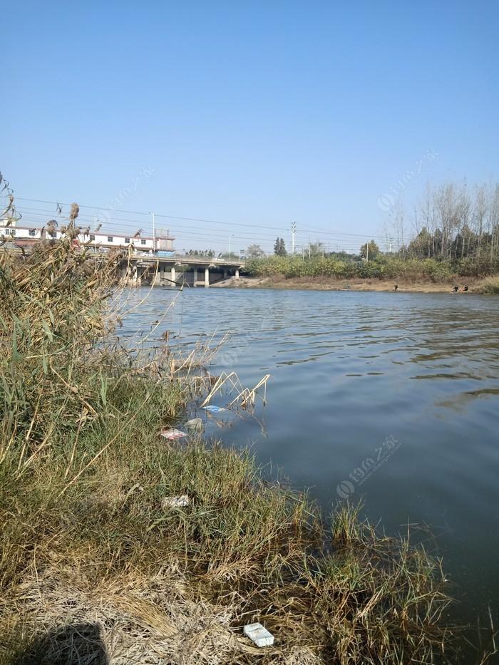 沱河张桥闸