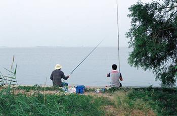 野钓如何钓到大鱼 这几招帮你搞定!