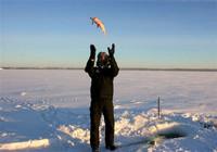 冬季钓鲫鱼如何选钓位?老钓友给你分享多年技巧!