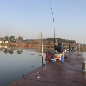 木兰湖搏鱼钓场天气预报