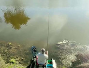 《黑马野钓》  夏季用手竿钓鱼,注意这4点,渔获多多