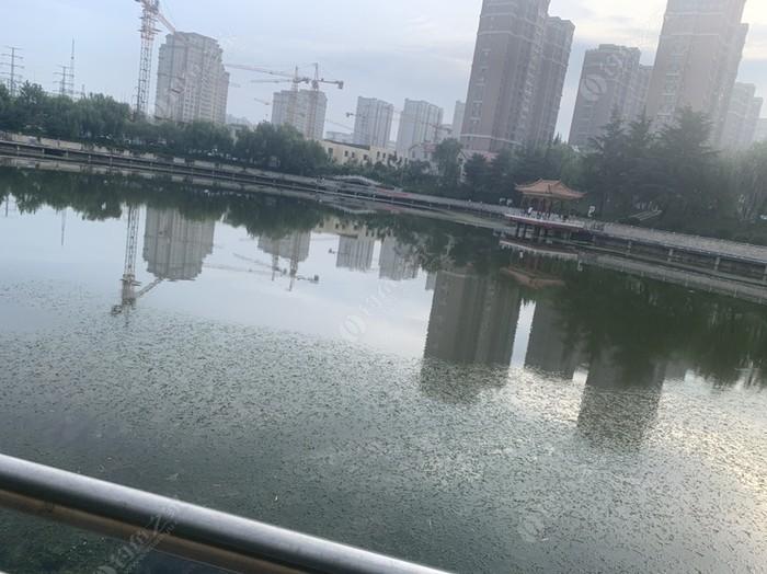 文昌渔花苑
