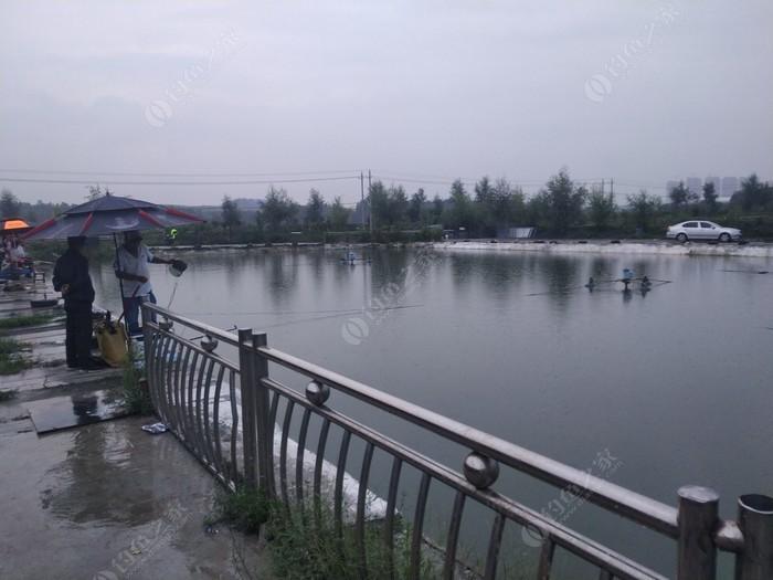 劉家川開心農場魚塘