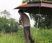 《户外野钓视频》 拿着这么长的杆钓鱼,配上这鱼情,应该很酸爽