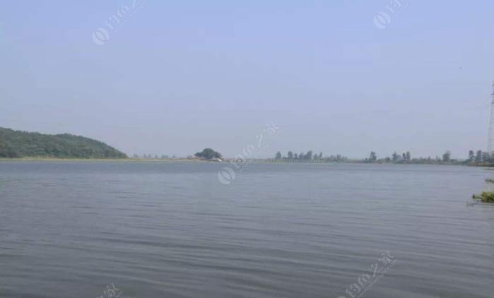 白荡湖垂钓中心