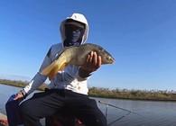 《麦子钓鱼》钓鱼实战:台钓采用这种作钓策略,增加的渔获不止一点点