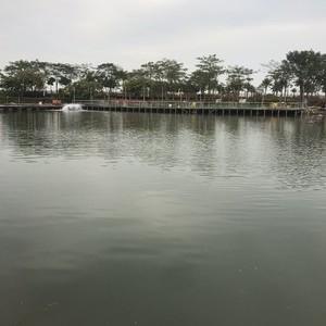望海园海钓场天气预报