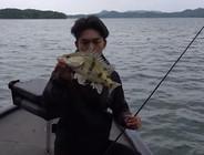 《EWE路亚》又到一年鳜鱼季,飘逸虫作钓湖边野鳜