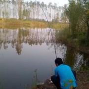 水庫如何釣鯉魚,如何做窩子