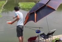 《户外野钓视频》天热鱼难钓,中途下了一场大雨,回来后窝里满是鱼星