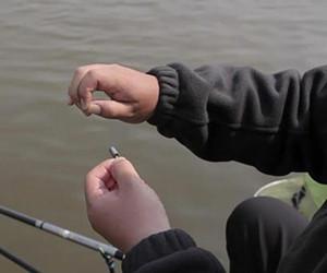 冬季鱼口差的战略调整技巧!