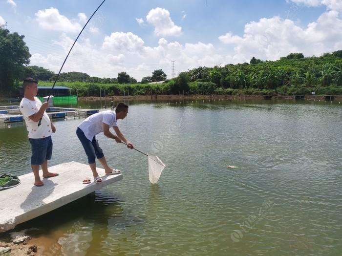 健泺钓鱼场