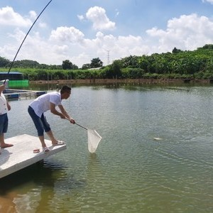 健泺钓鱼场天气预报