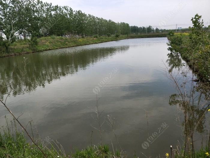 小西湖农业公园钓场