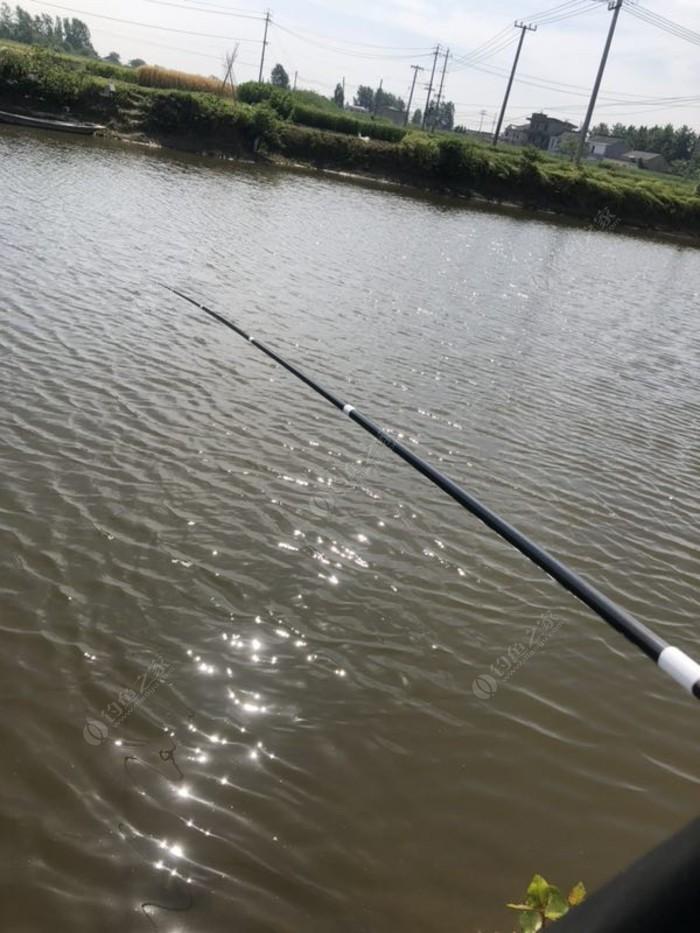 高沟2号鱼塘