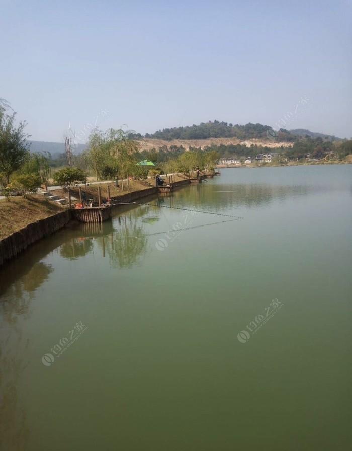 鳄鱼湖生态园垂钓基地