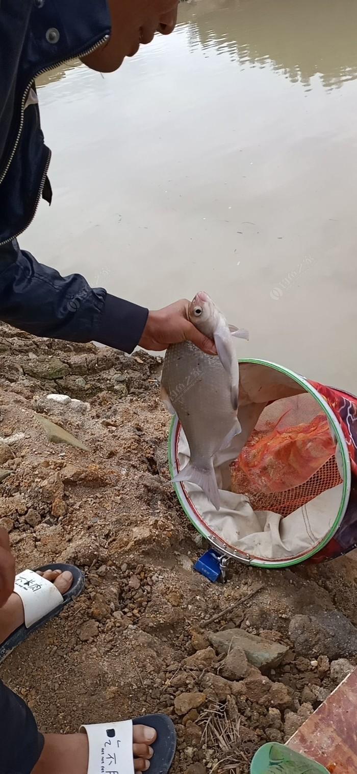松容山庄溪水小龙虾养殖基地