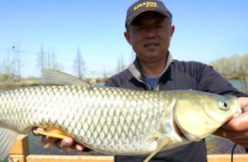 《游钓中国》第四季 第50集 春回大地探钓巢湖之滨