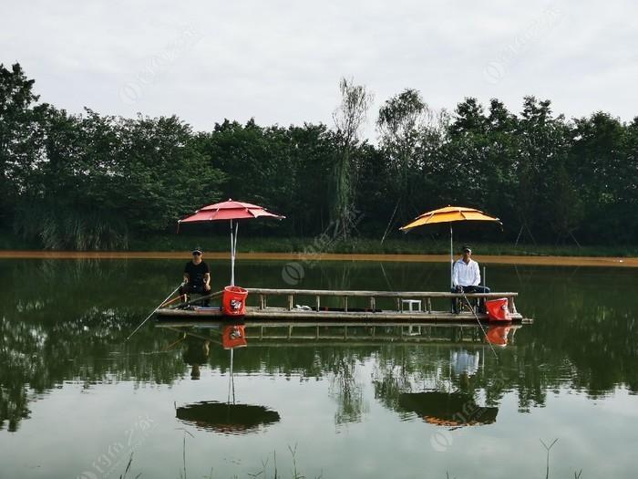 稻乡渔歌(西江月垂钓)