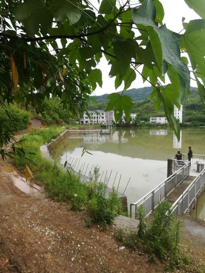 莲蓬里水库