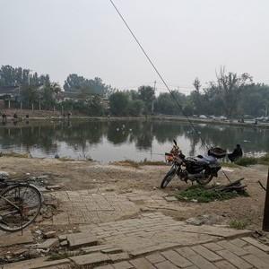 高丽营一村鱼场