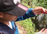 《户外老曹》钓鱼新手必知:什么漂相能中鱼?